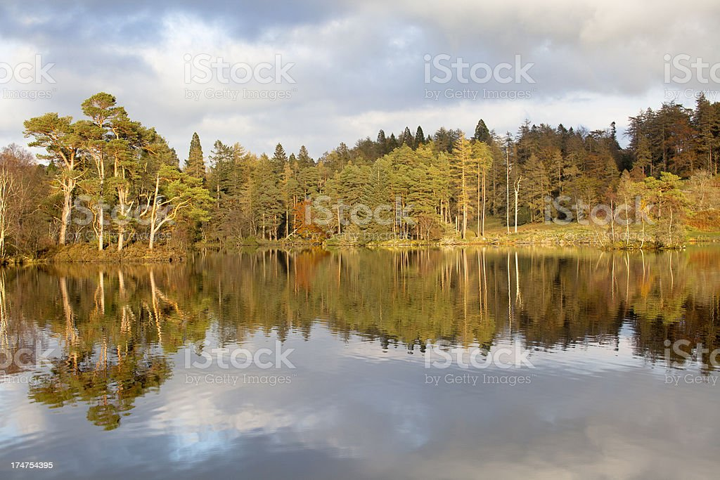 Autumn colours at Tarn Howes, Lake District, UK royalty-free stock photo