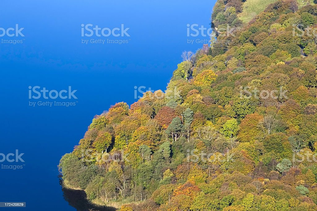 Autumn colours by Grasmere royalty-free stock photo