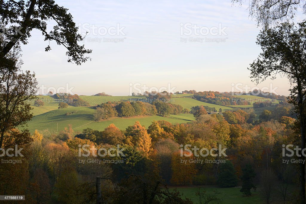 Autumn colours in the Surrey Hills. England stock photo
