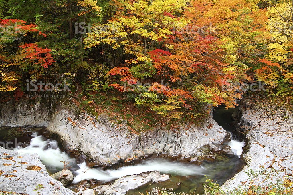 Autumn colours of valley royalty-free stock photo