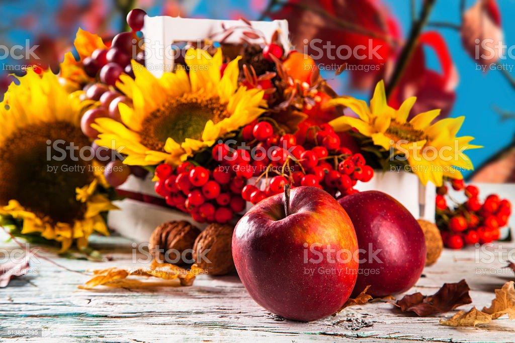 Autumn concept stock photo