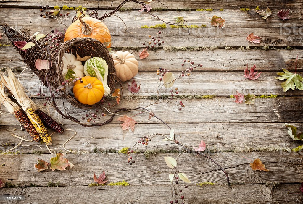 Autumn Cornucopia on Old Wood Background stock photo