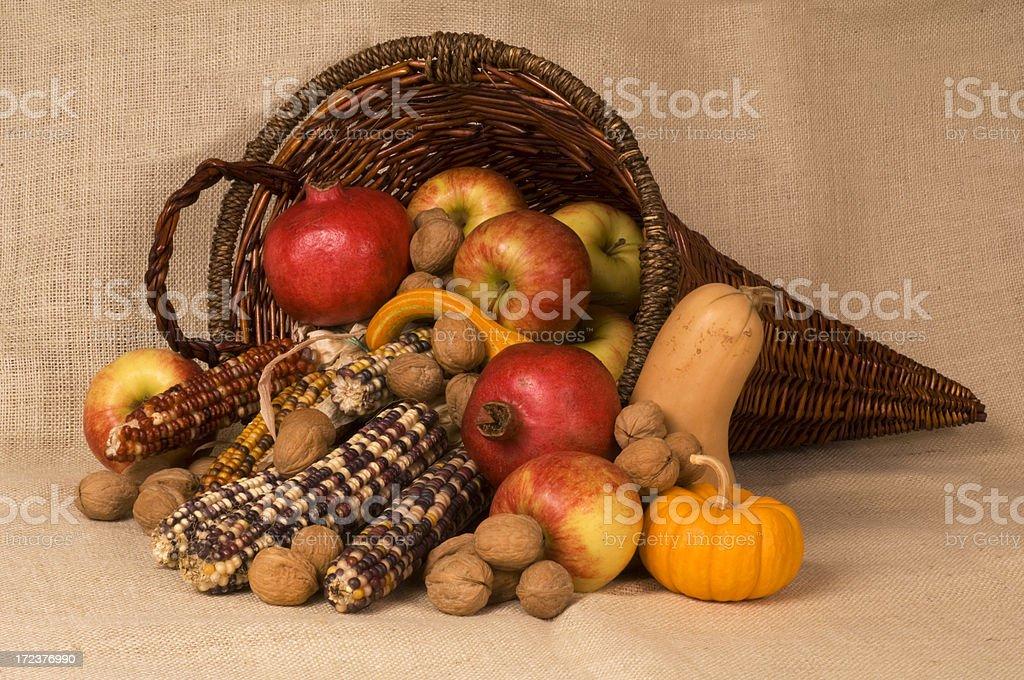 Autumn Cornucopia stock photo
