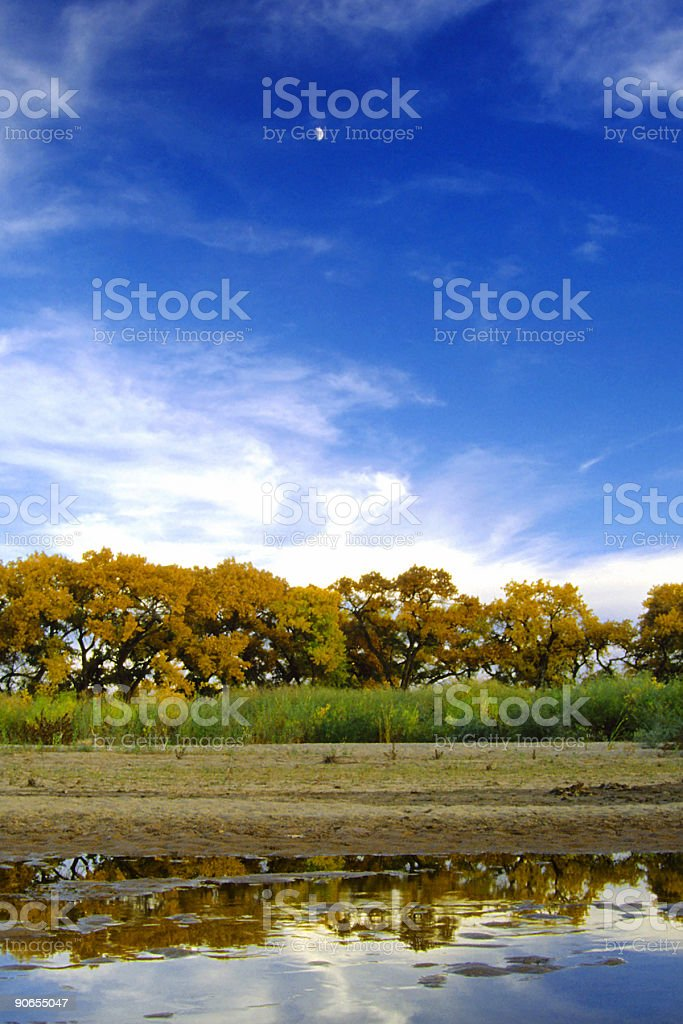 autumn cottonwood river landscape sky stock photo