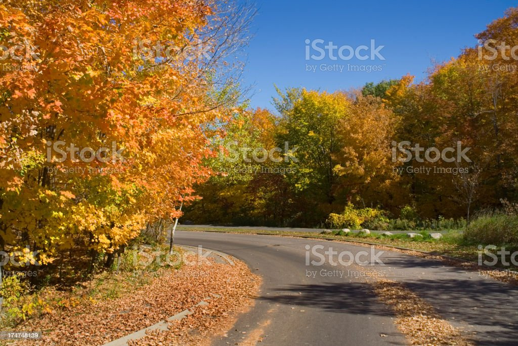 Autumn Country Road Hz royalty-free stock photo