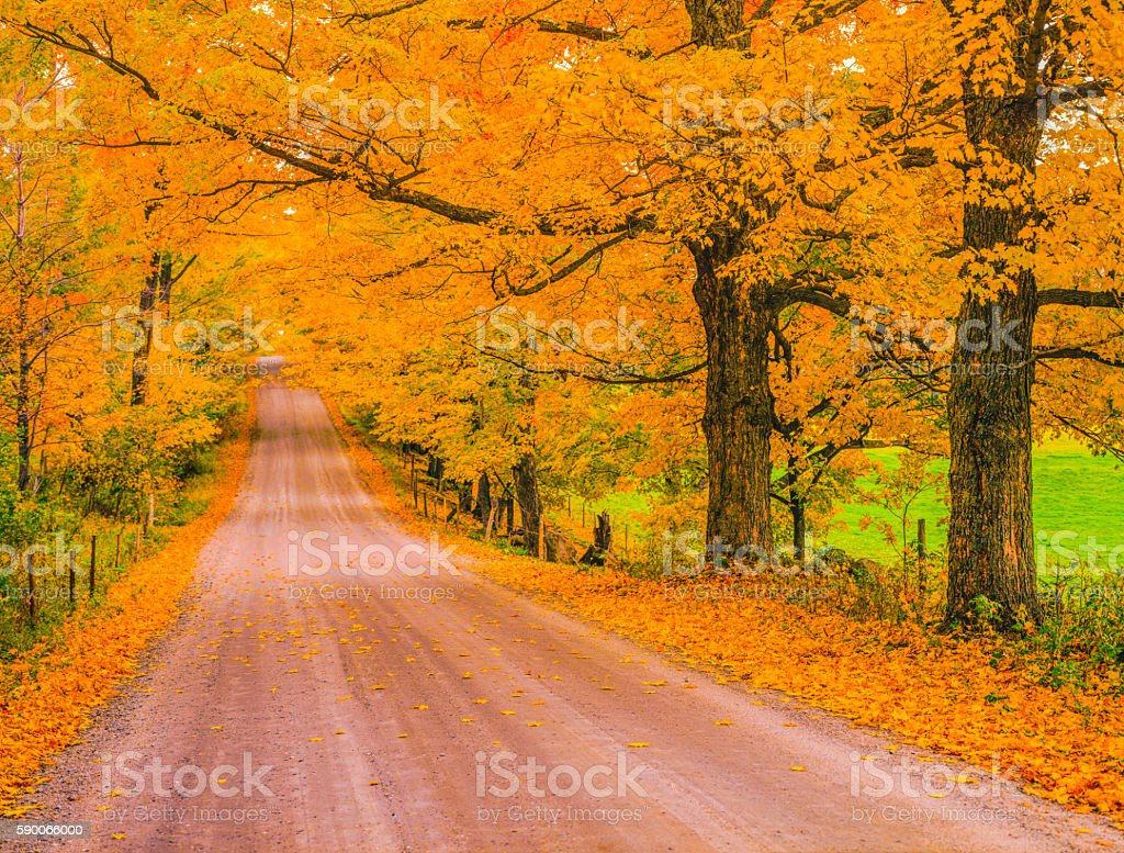 Autumn country road in Vermont stock photo