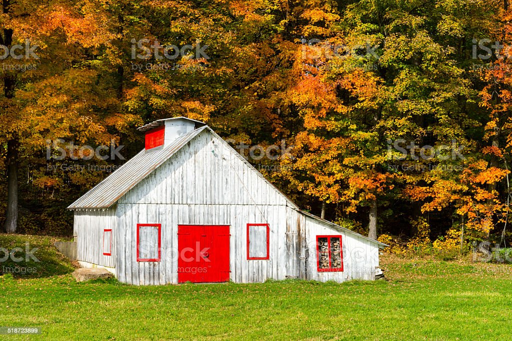 Autumn country side stock photo