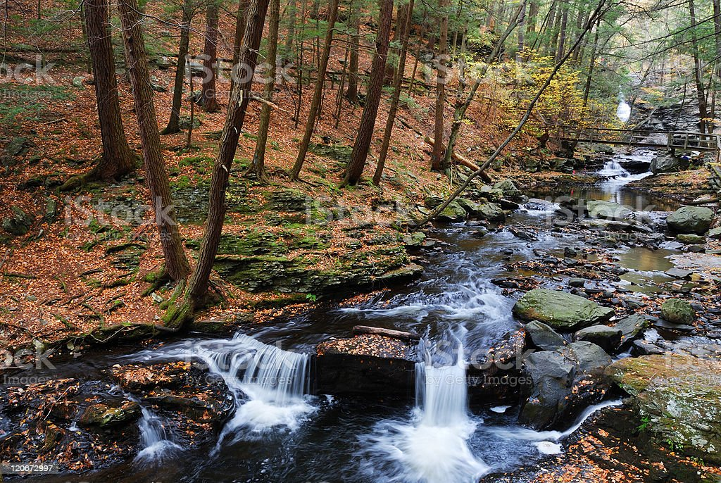 Autumn creek in woods with foliage royalty-free stock photo