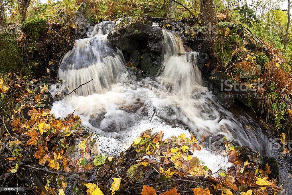 Autumn creek royalty-free stock photo