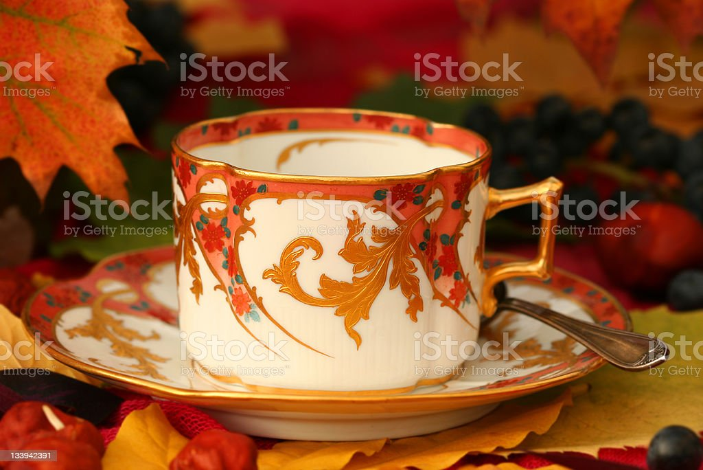 Autumn cup royalty-free stock photo