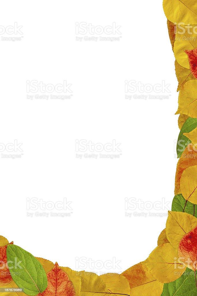 Autumn curve background royalty-free stock photo