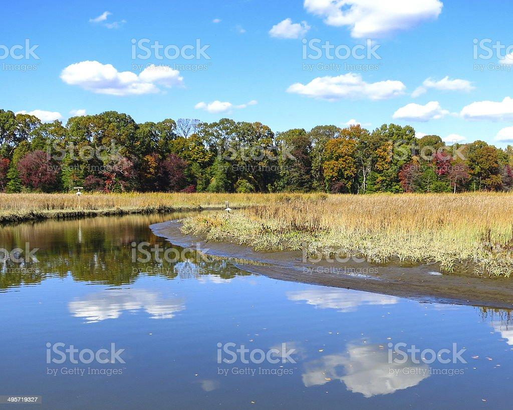 Autumn Day Along the Creek stock photo