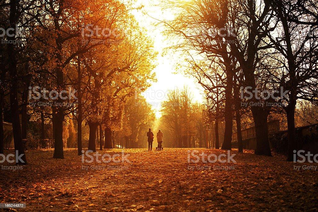 Autumn day in Schonbrunn Park stock photo