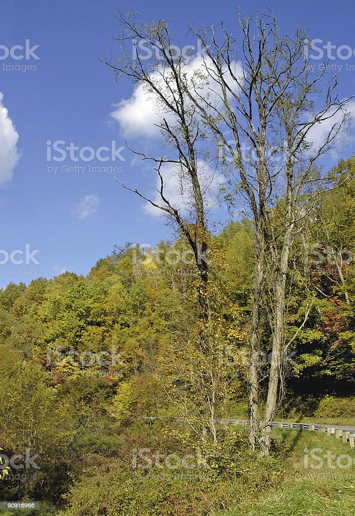 autumn day in the mountains royalty-free stock photo