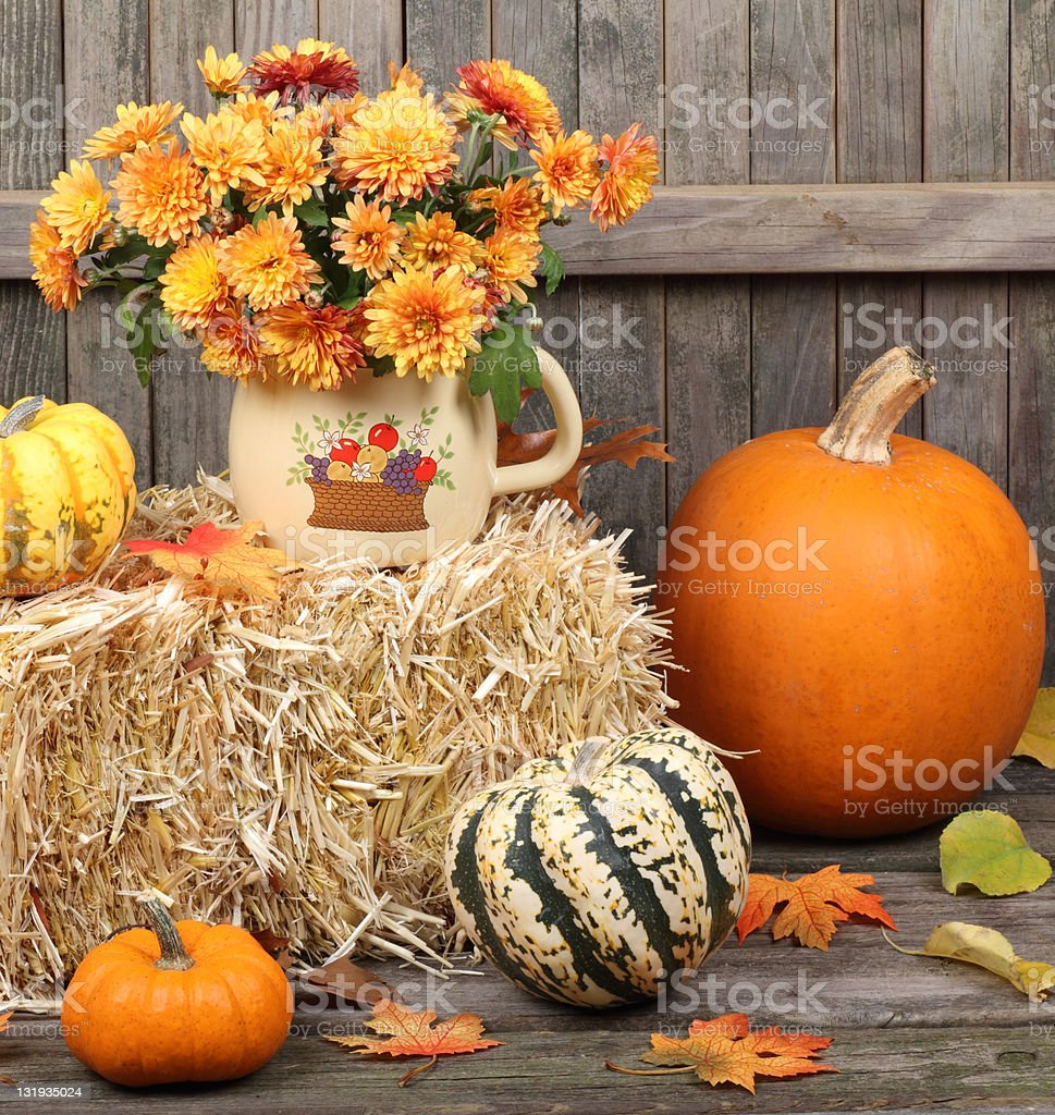 Autumn Decoratioms royalty-free stock photo
