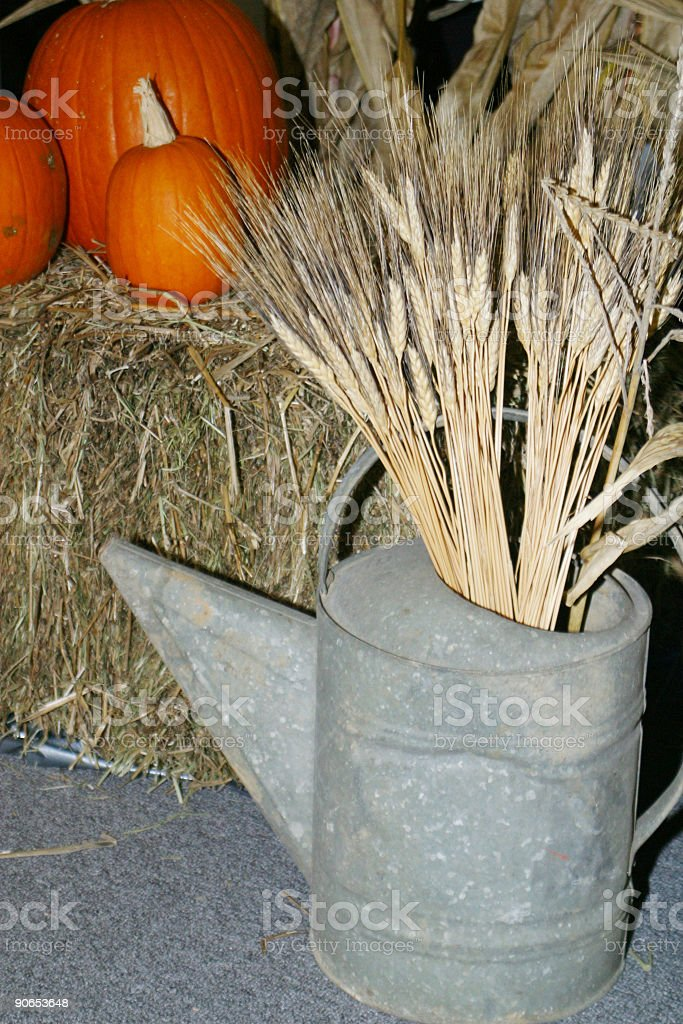 Autumn Decoration 4 royalty-free stock photo
