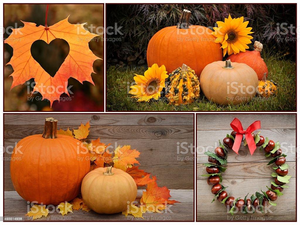 Autumn decoration, collection. stock photo