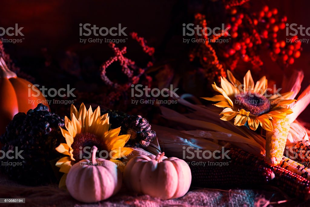 Autumn Decoration of Gourds, Sunflowers and Indian Corn stock photo
