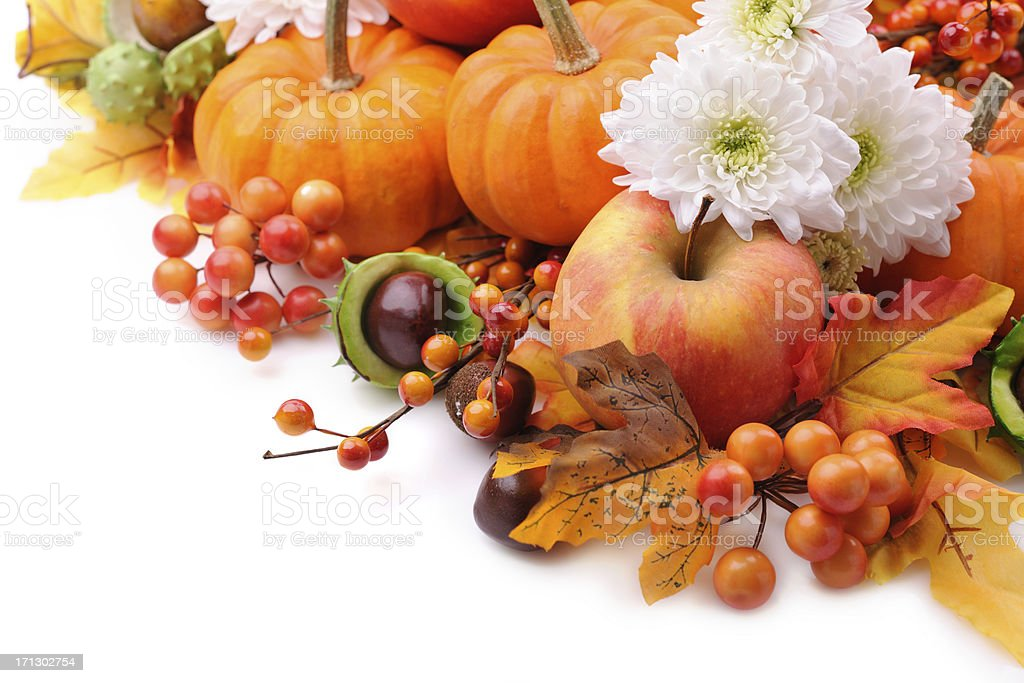 Autumn decoration on white with copy space royalty-free stock photo