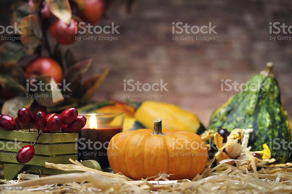 Autumn decoration royalty-free stock photo