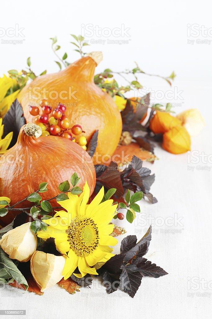Autumn decoration with hokkaido pumpkins and sunflowers royalty-free stock photo