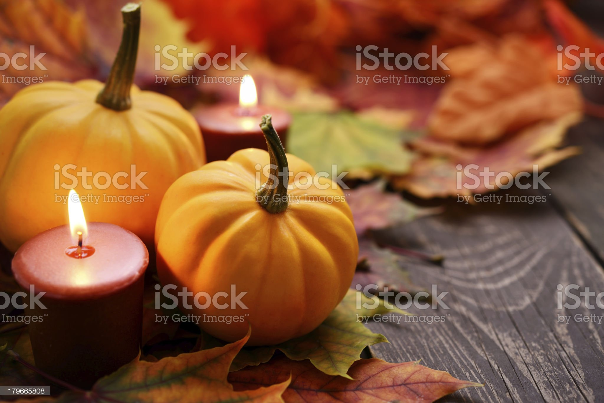 Autumn decoration with squash and dry maple leaves royalty-free stock photo