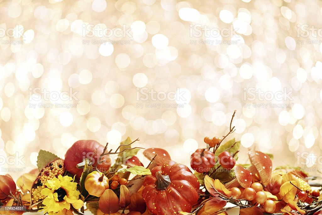 Autumn decoration with white copy space royalty-free stock photo