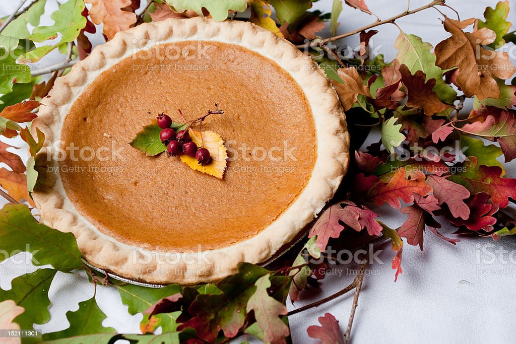 Autumn Dessert royalty-free stock photo