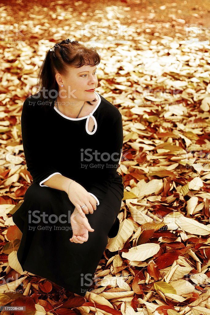 Autumn Dreams stock photo