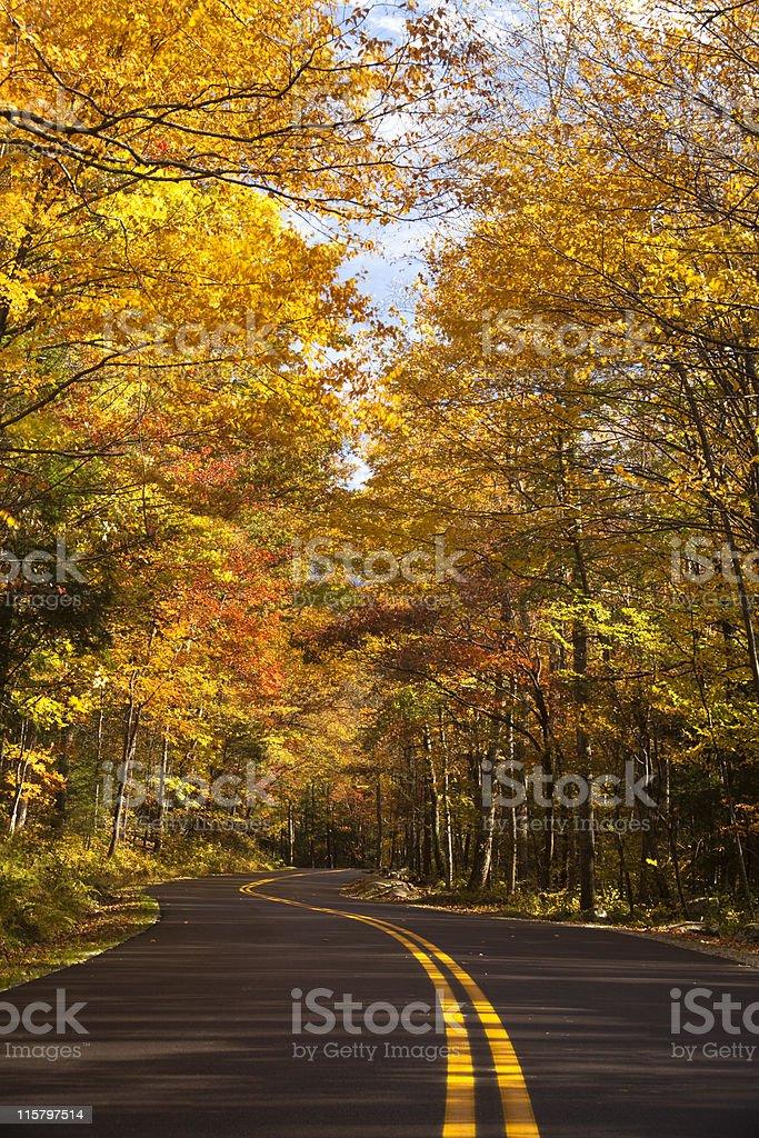 Autumn Drive in the Smokies royalty-free stock photo