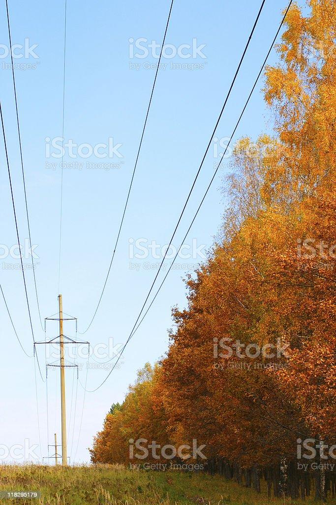 Jesień energii zbiór zdjęć royalty-free
