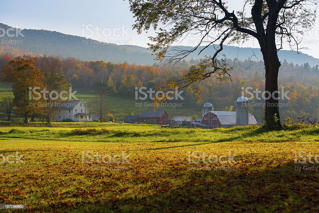 Autumn Evening on the Farm stock photo