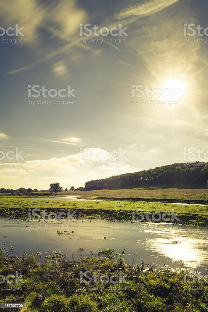 Autumn evening sunset in the forest (XXXLarge) royalty-free stock photo