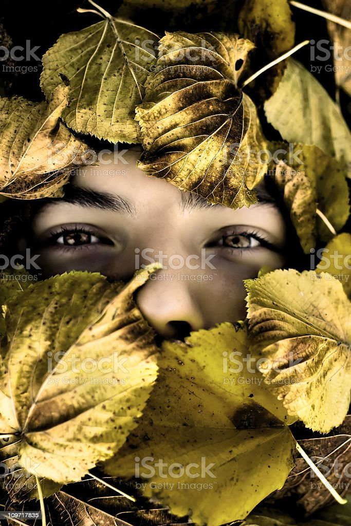 Young man's face surrounded by leaves stock photo