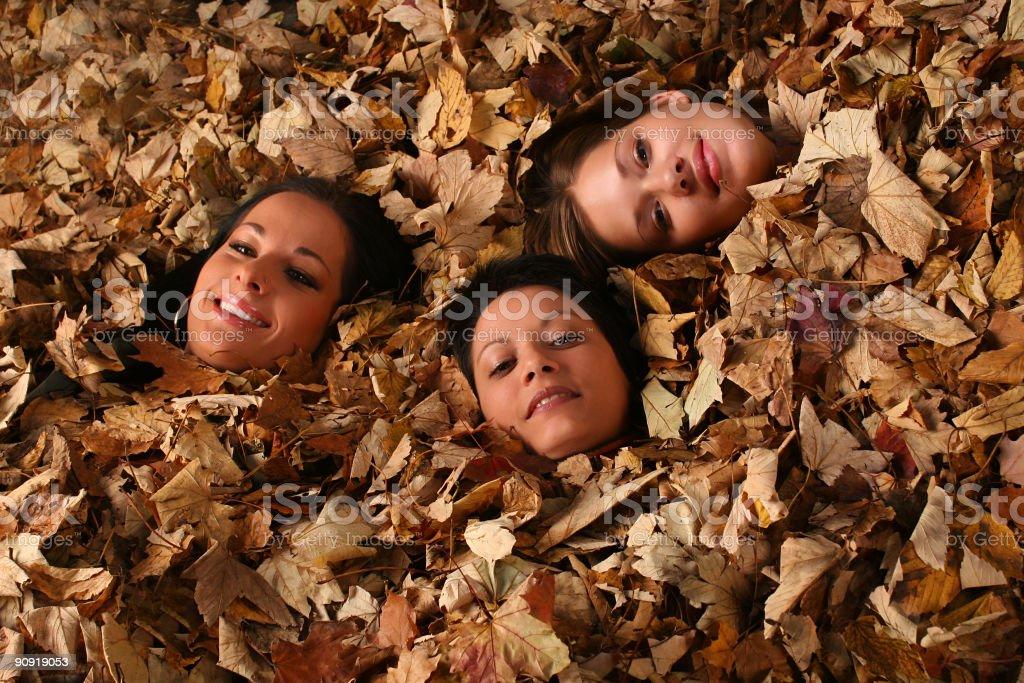 Autumn faces royalty-free stock photo