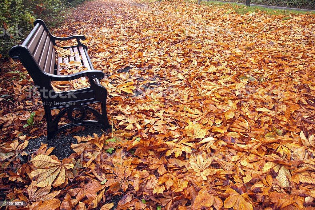 Autumn / Fall Bench royalty-free stock photo