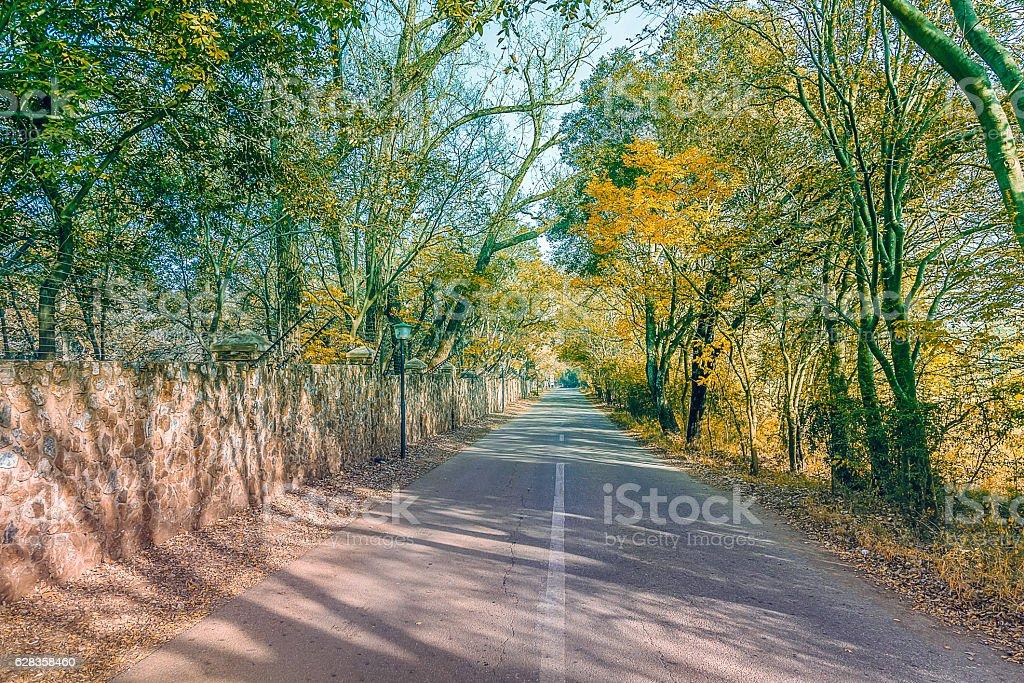 Autumn fall farm road stock photo