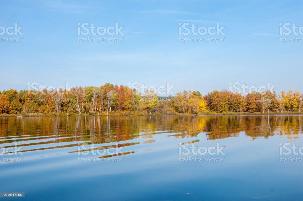 autumn, fall, leaf fall, fall of the leaf. stock photo