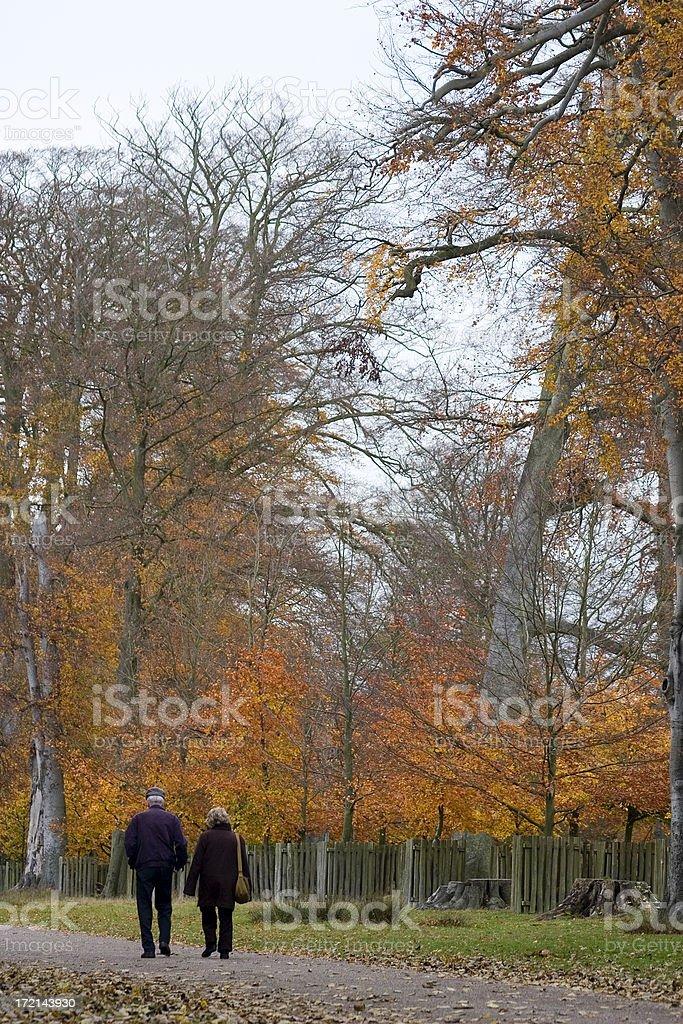 Autumn / Fall walk royalty-free stock photo