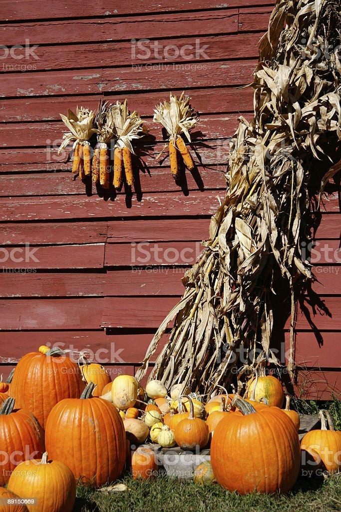 Autumn Farm Harvest royalty-free stock photo