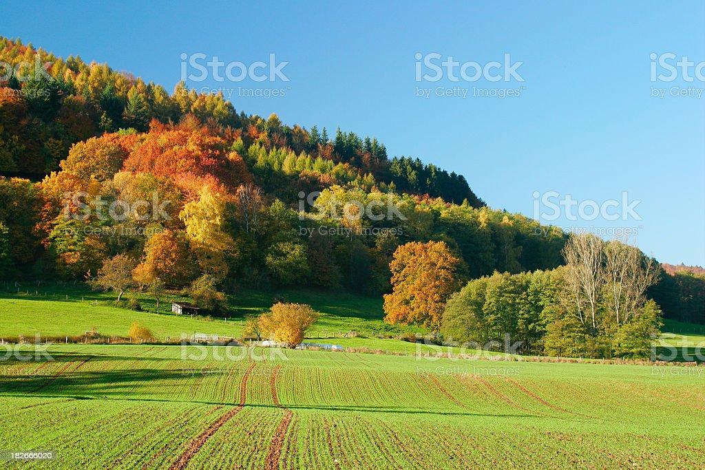 Autumn Farmland royalty-free stock photo