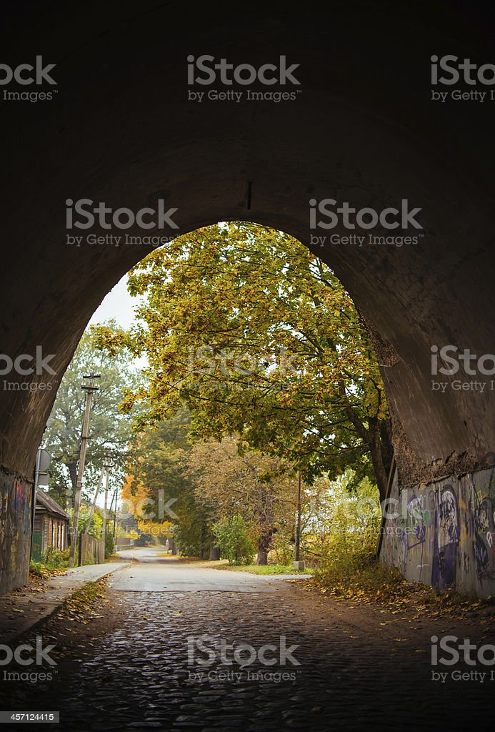 Autumn feeling tunnel royalty-free stock photo