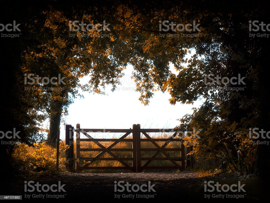 Autumn field gate stock photo