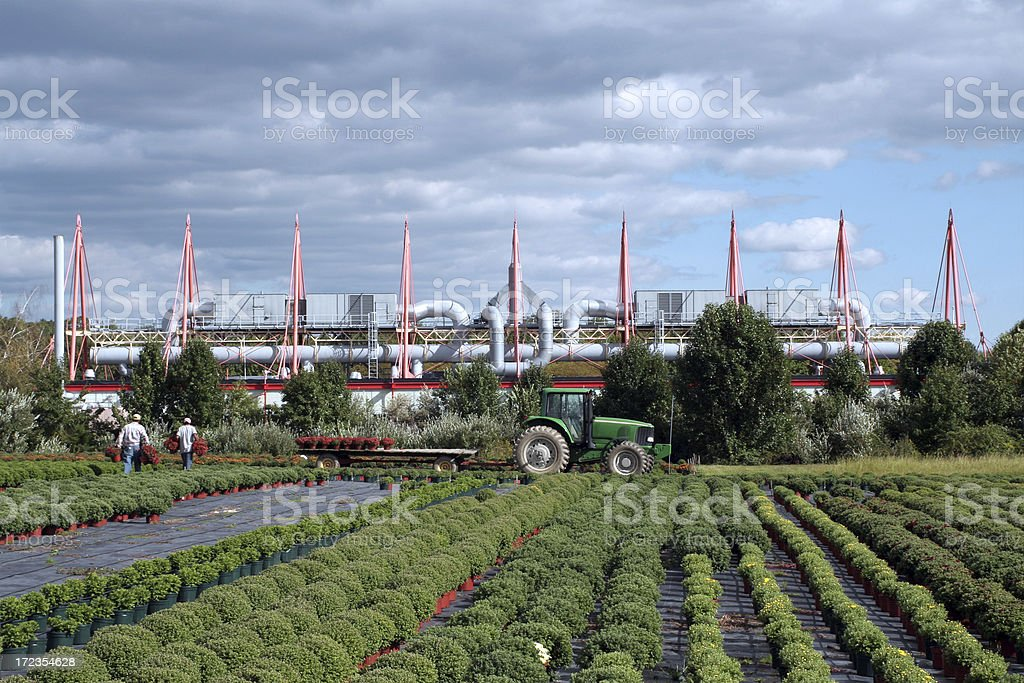 Autumn field in front of biotechnology factory royalty-free stock photo