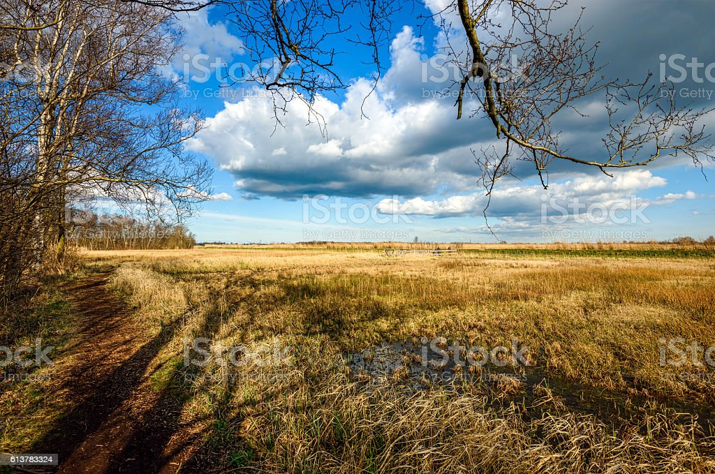 Autumn field landscape clouds stock photo