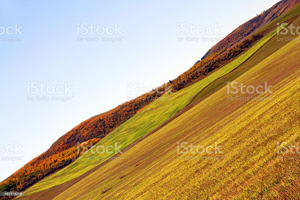Autumn Fields stock photo