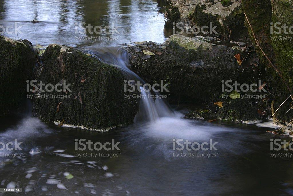 autumn flow series (4) royalty-free stock photo