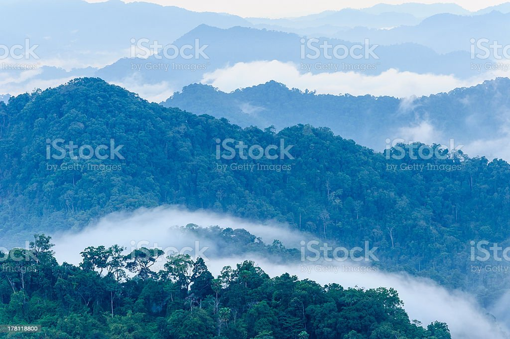 Autumn foggy  in the mountains royalty-free stock photo