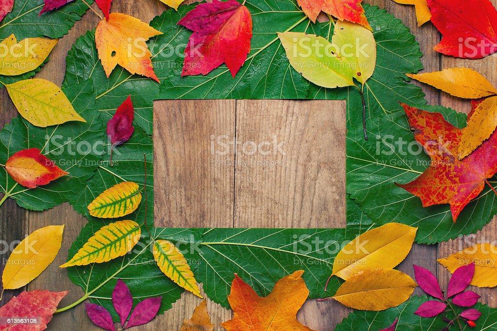 Autumn Foliage Frame Background stock photo