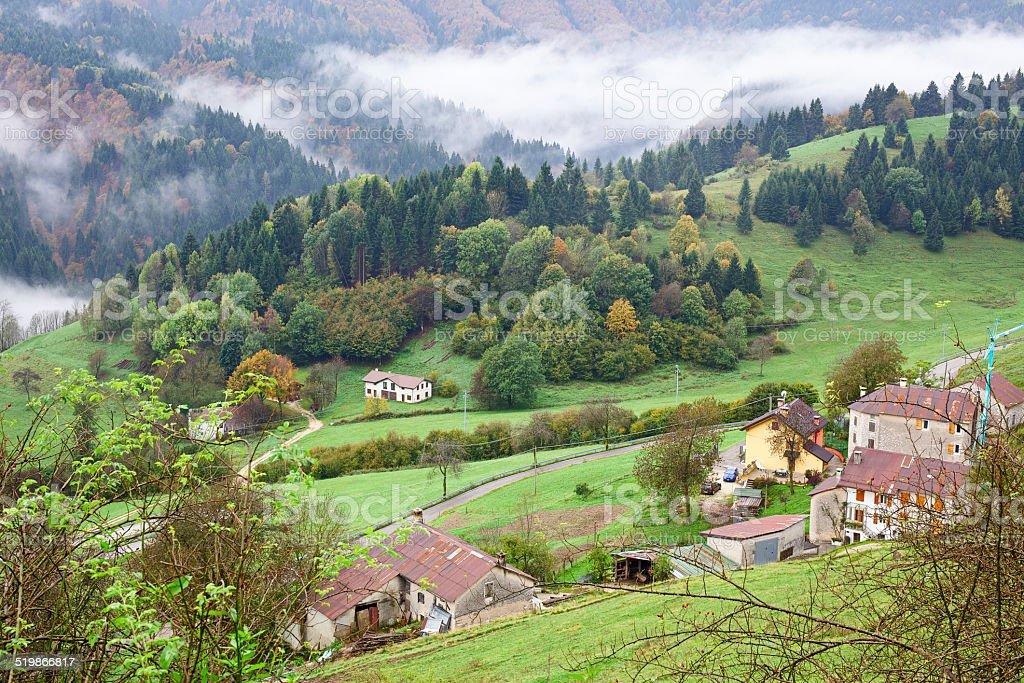 Autumn foliage in Asiago high plateau. Veneto. Italy. stock photo